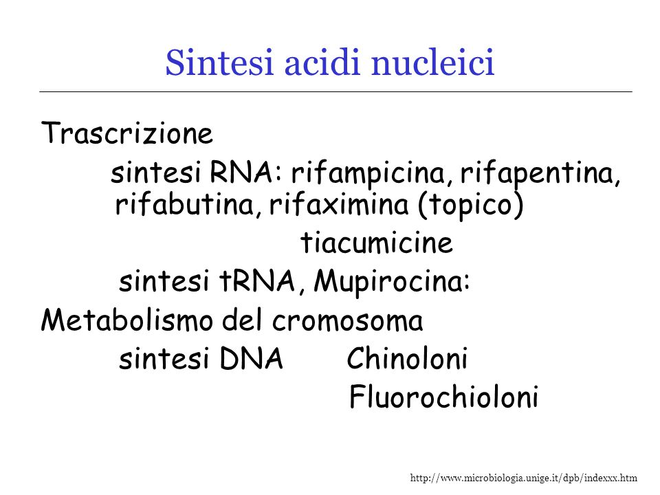 Sintesi acidi nucleici