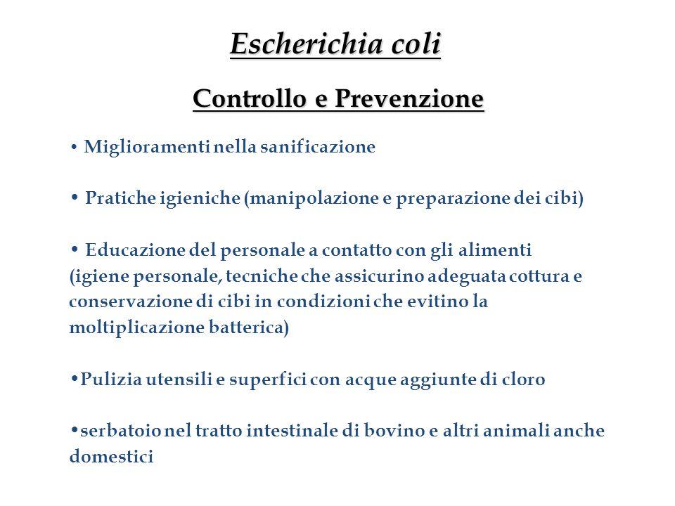 Escherichia coli Controllo e Prevenzione
