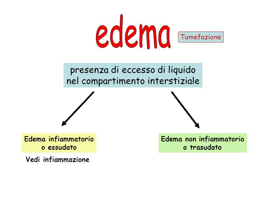 Edema non infiammatorio