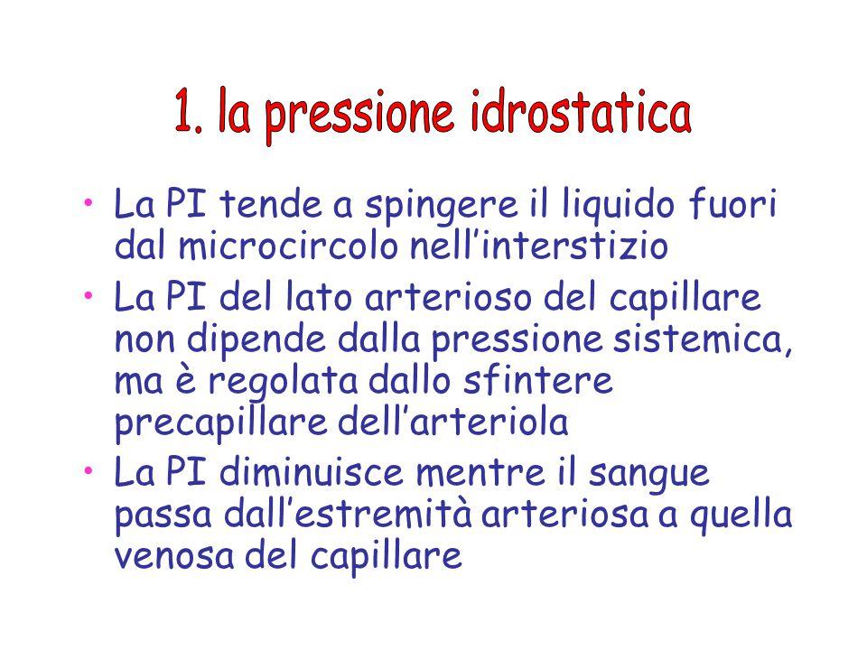 1. la pressione idrostatica