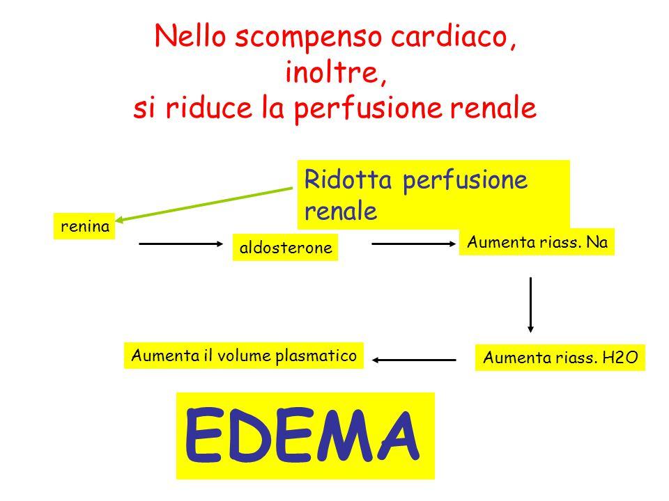Nello scompenso cardiaco, inoltre, si riduce la perfusione renale