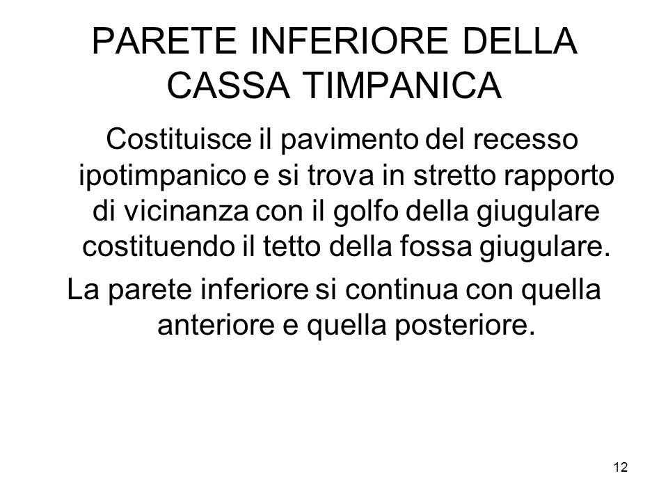 PARETE INFERIORE DELLA CASSA TIMPANICA
