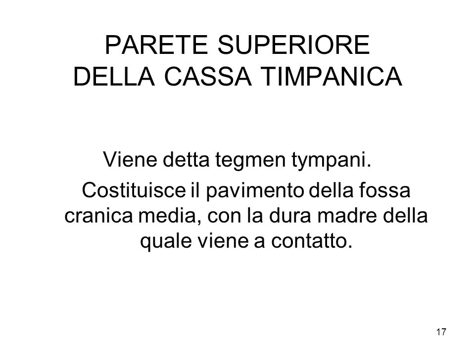 PARETE SUPERIORE DELLA CASSA TIMPANICA