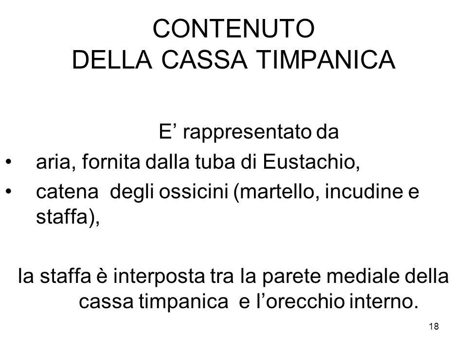 CONTENUTO DELLA CASSA TIMPANICA