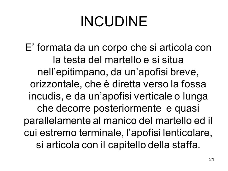 INCUDINE
