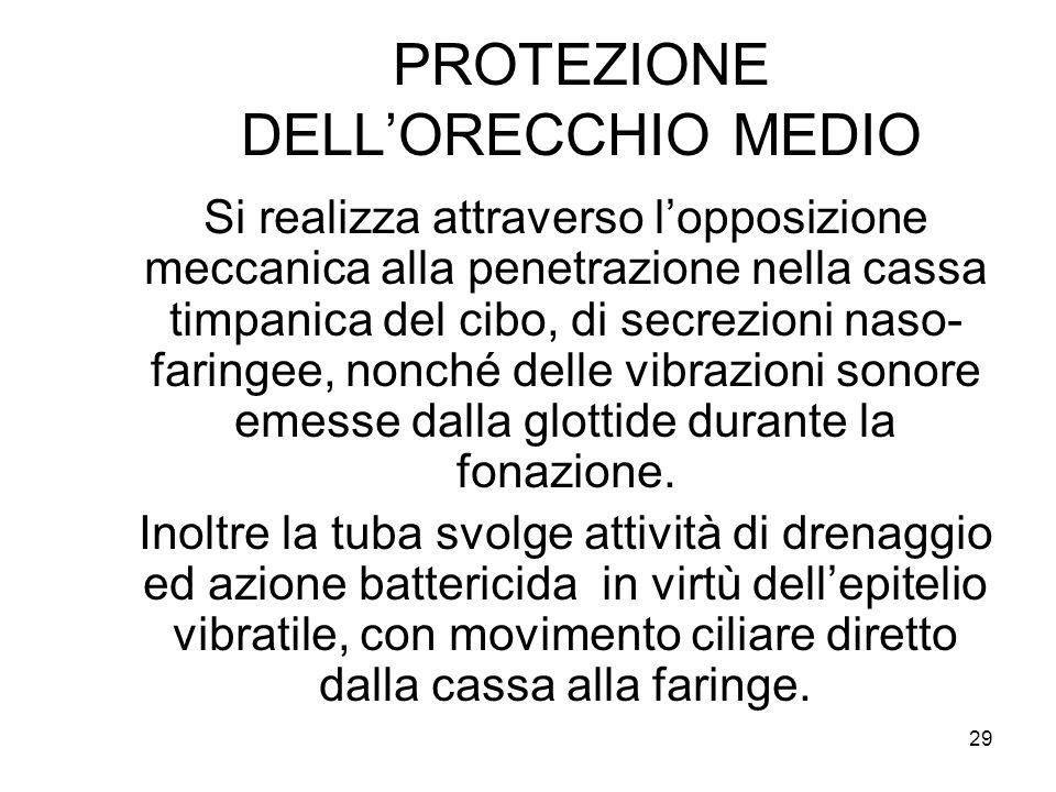 PROTEZIONE DELL'ORECCHIO MEDIO
