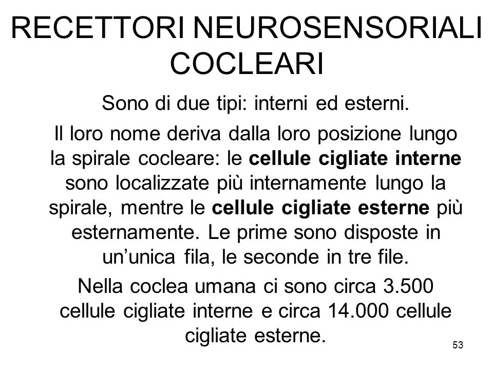 RECETTORI NEUROSENSORIALI COCLEARI
