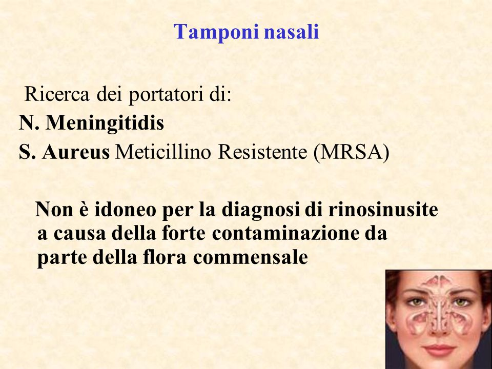 Tamponi nasali Ricerca dei portatori di: N. Meningitidis. S. Aureus Meticillino Resistente (MRSA)