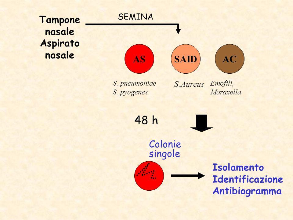Tampone nasale Aspirato nasale