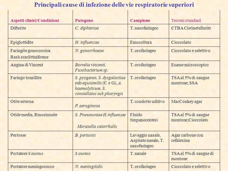 Principali cause di infezione delle vie respiratorie superiori