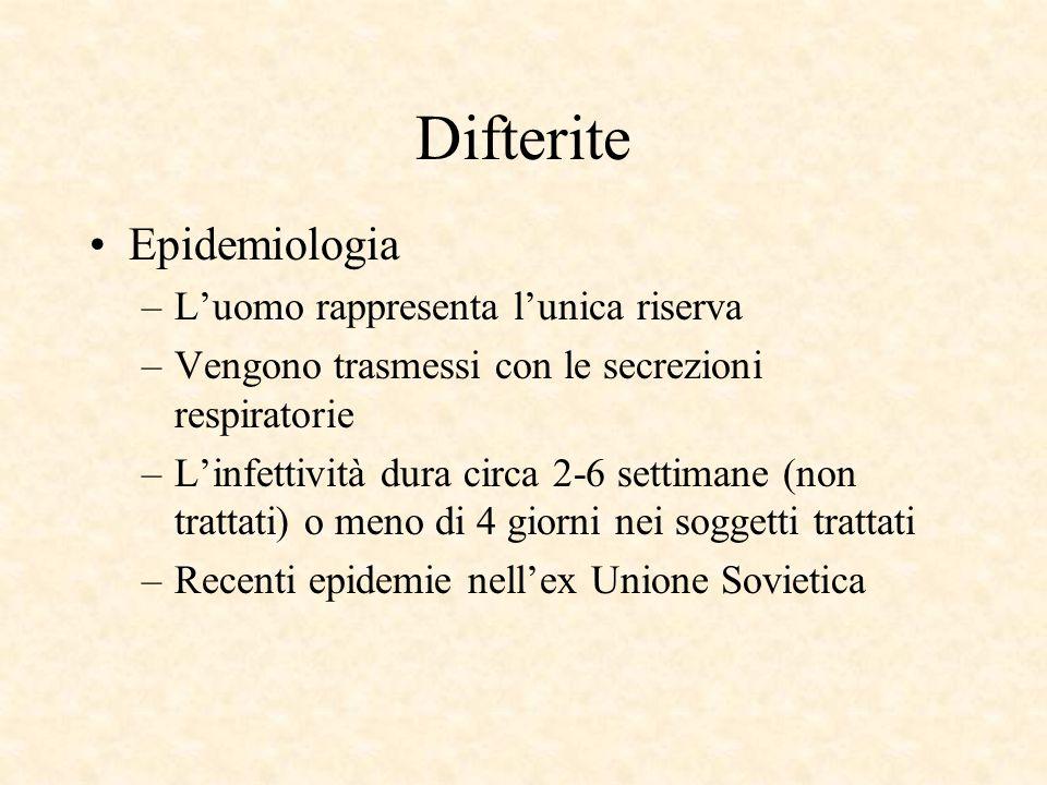 Difterite Epidemiologia L'uomo rappresenta l'unica riserva