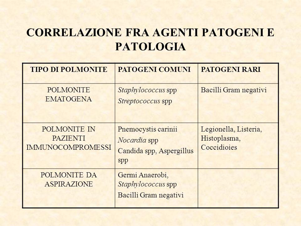 CORRELAZIONE FRA AGENTI PATOGENI E PATOLOGIA
