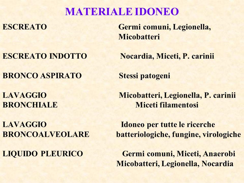 MATERIALE IDONEO ESCREATO Germi comuni, Legionella, Micobatteri