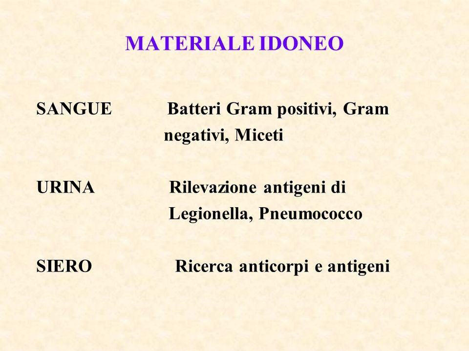 MATERIALE IDONEO SANGUE Batteri Gram positivi, Gram negativi, Miceti