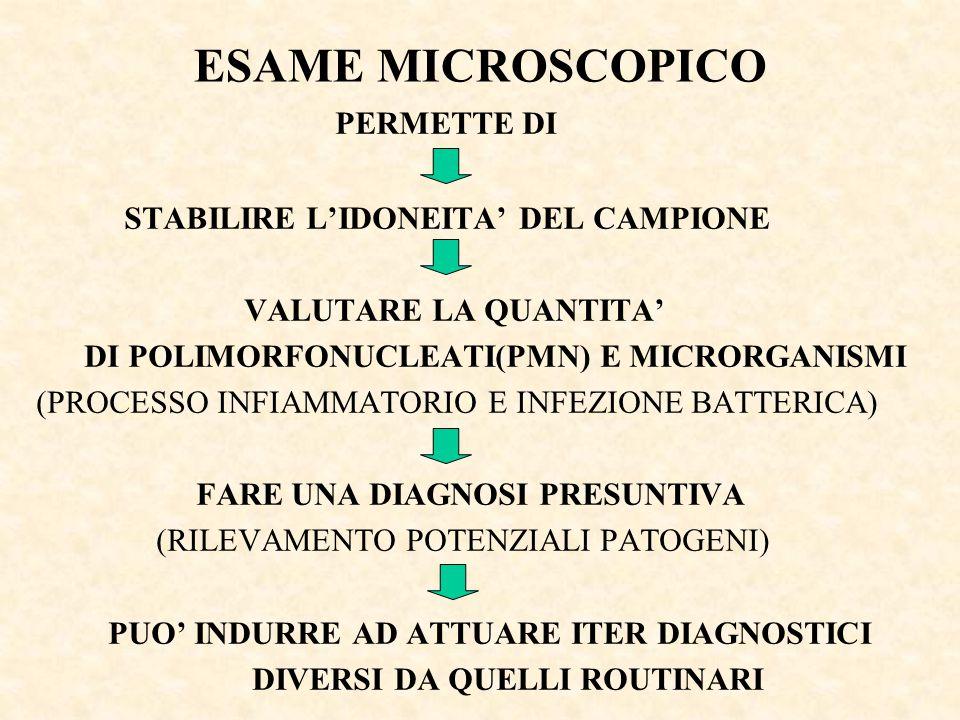 ESAME MICROSCOPICO PERMETTE DI STABILIRE L'IDONEITA' DEL CAMPIONE