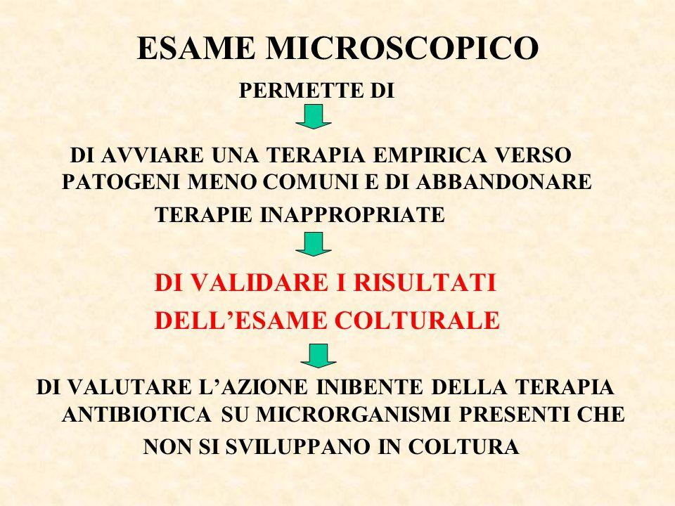 ESAME MICROSCOPICO DELL'ESAME COLTURALE PERMETTE DI