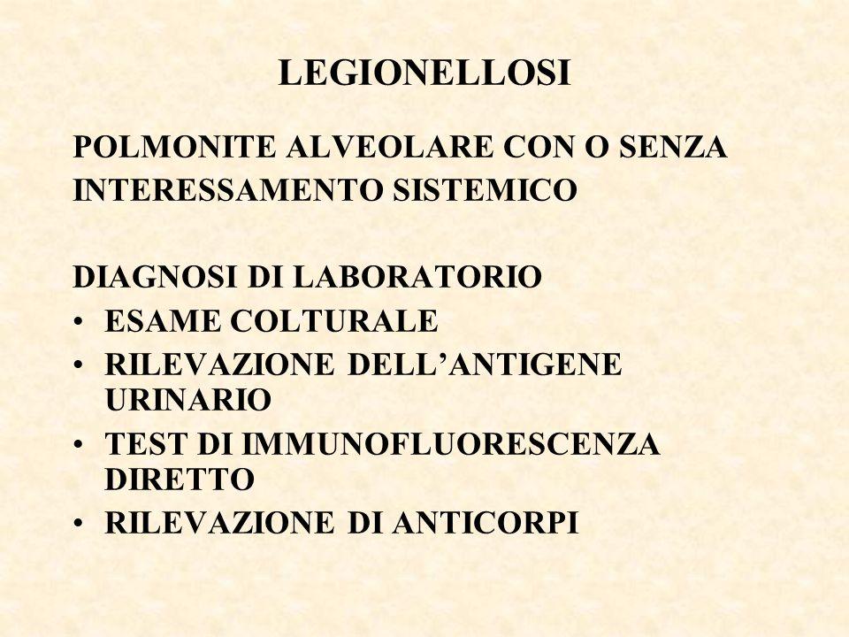 LEGIONELLOSI POLMONITE ALVEOLARE CON O SENZA INTERESSAMENTO SISTEMICO