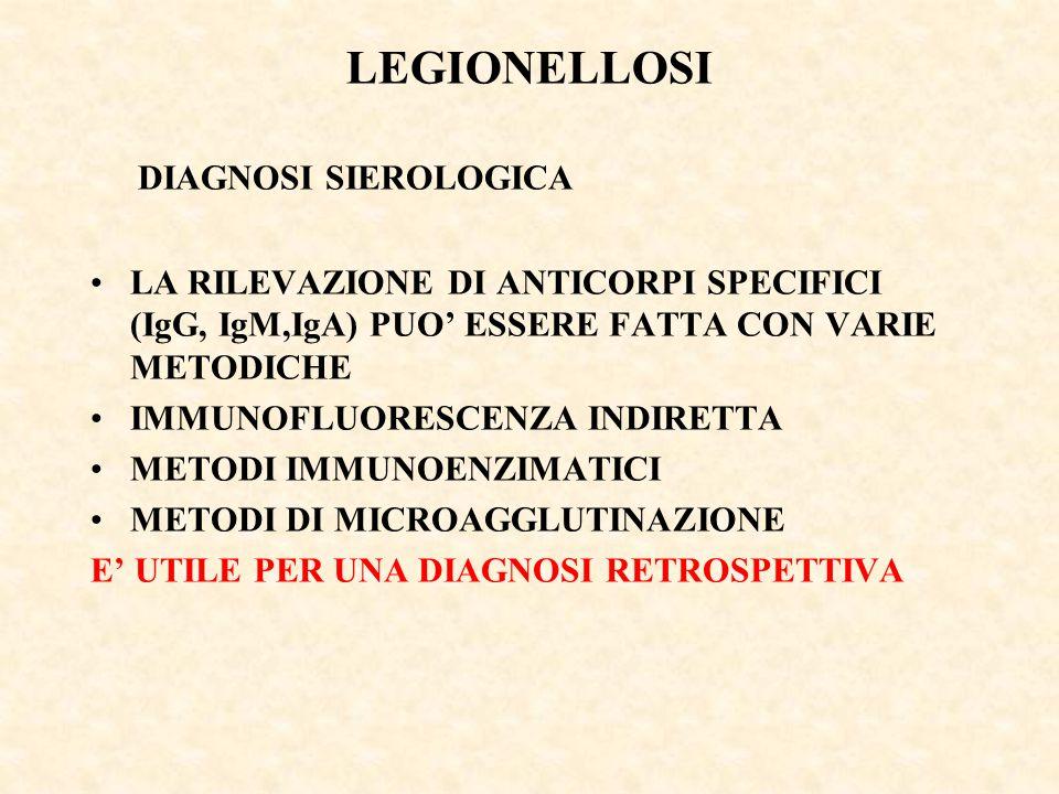 LEGIONELLOSI DIAGNOSI SIEROLOGICA