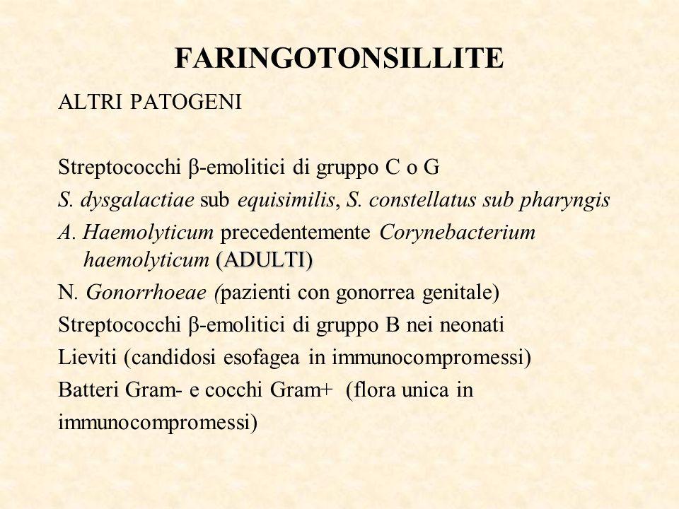 FARINGOTONSILLITE ALTRI PATOGENI