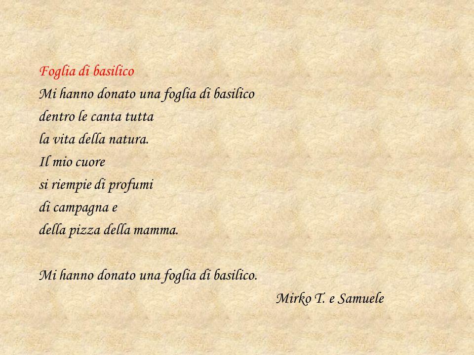 Foglia di basilico Mi hanno donato una foglia di basilico dentro le canta tutta la vita della natura.