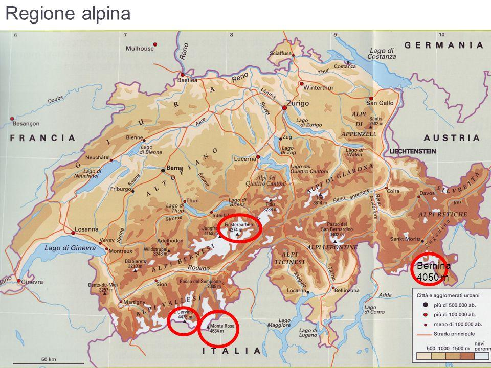 Regione alpina Bernina 4050 m