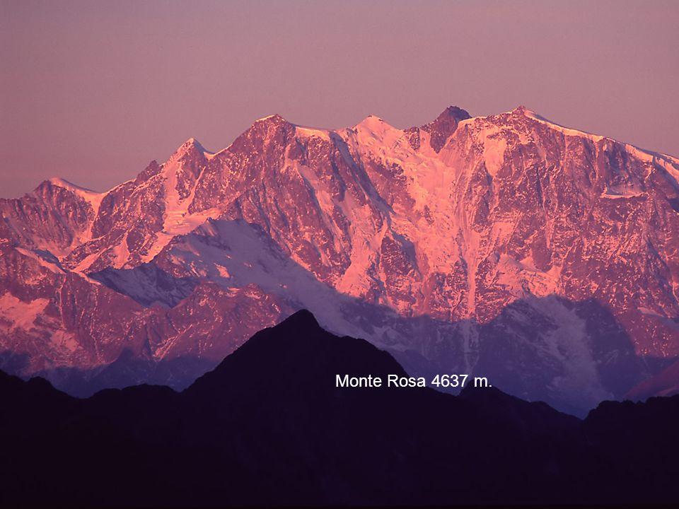 Cervino 4478 Monte Rosa 4637 m.