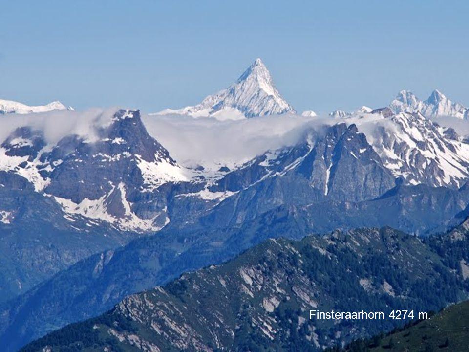 Monte Rosa 4637 m. Cervino 4478 Finsteraarhorn 4274 m.