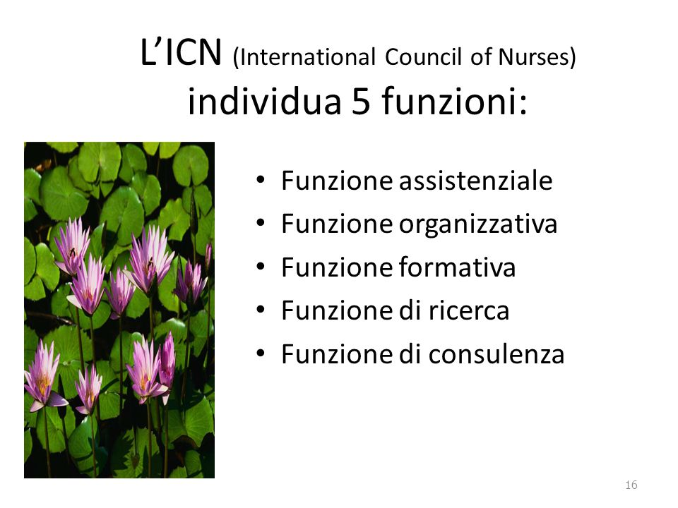 L'ICN (International Council of Nurses) individua 5 funzioni: