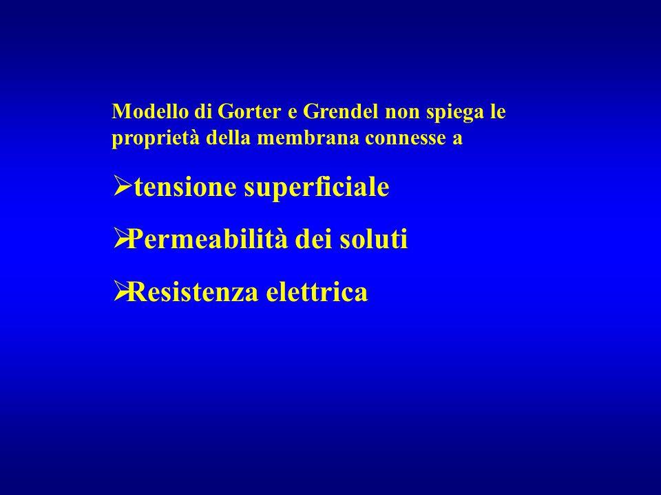 tensione superficiale Permeabilità dei soluti Resistenza elettrica