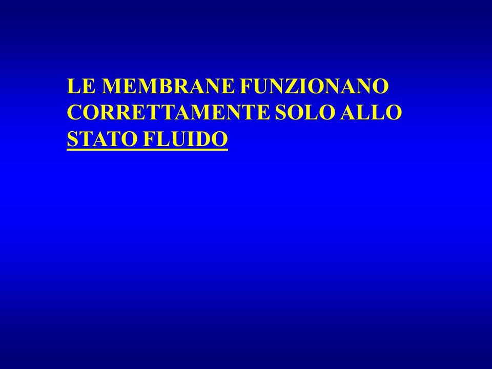 LE MEMBRANE FUNZIONANO CORRETTAMENTE SOLO ALLO STATO FLUIDO
