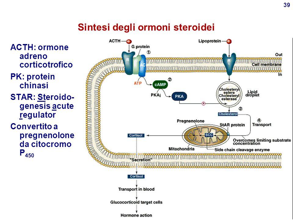 Sintesi degli ormoni steroidei