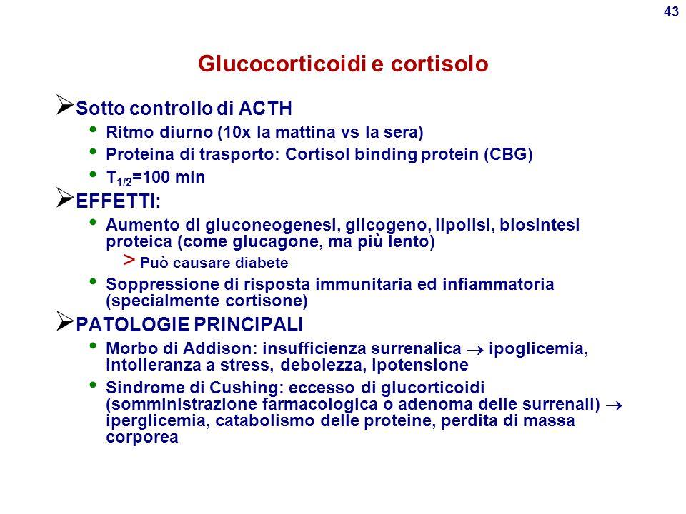 Glucocorticoidi e cortisolo