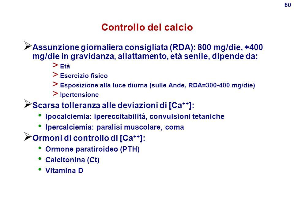 Controllo del calcio Assunzione giornaliera consigliata (RDA): 800 mg/die, +400 mg/die in gravidanza, allattamento, età senile, dipende da: