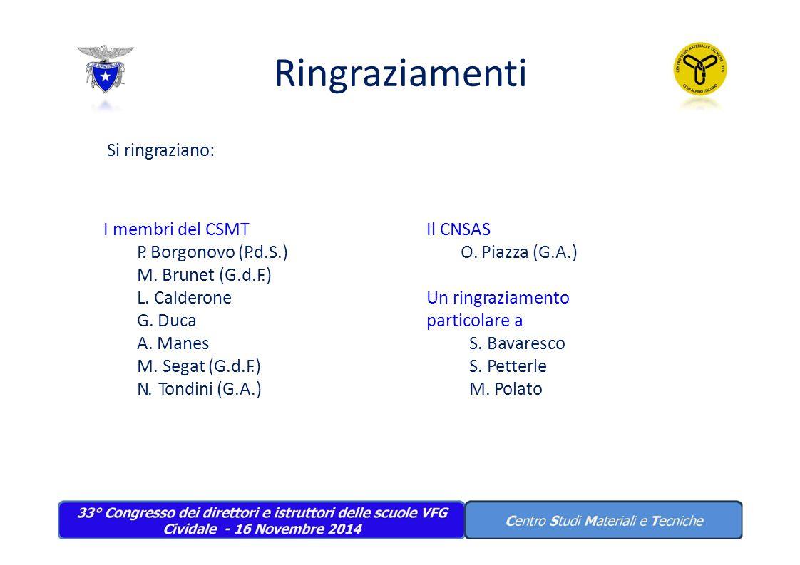 Ringraziamenti Si ringraziano: I membri del CSMT P. Borgonovo (P.d.S.)