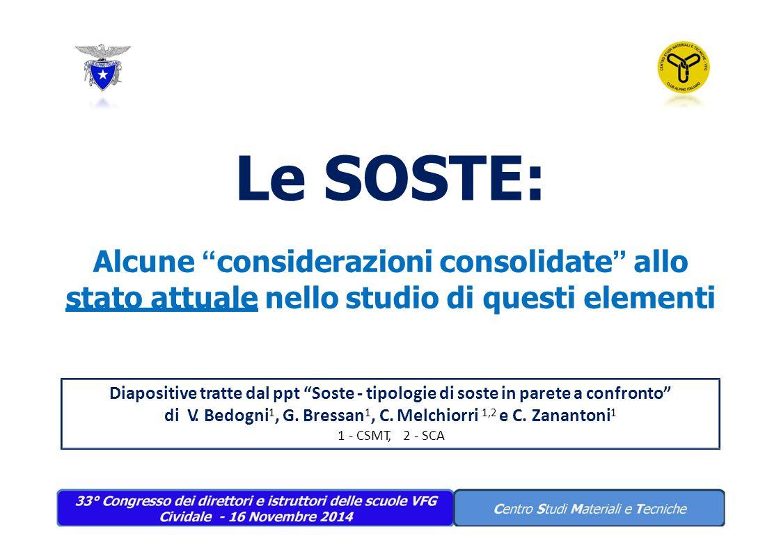 Le SOSTE: Alcune considerazioni consolidate allo stato attuale nello studio di questi elementi.