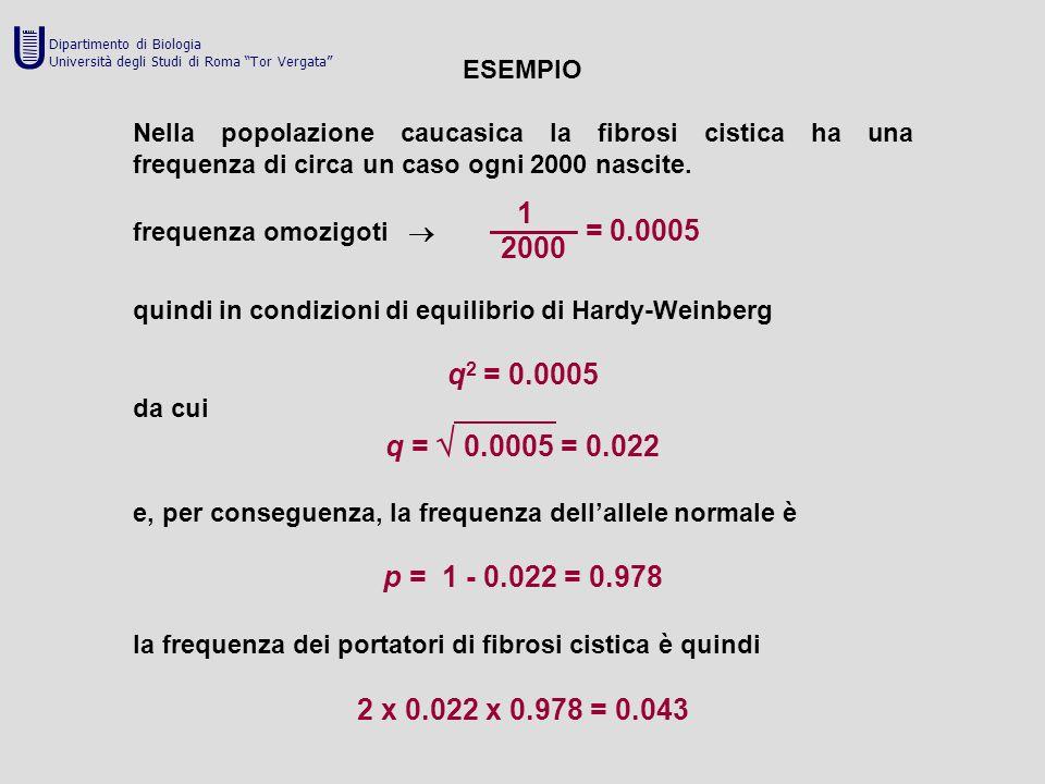 U Dipartimento di Biologia. Università degli Studi di Roma Tor Vergata ESEMPIO.