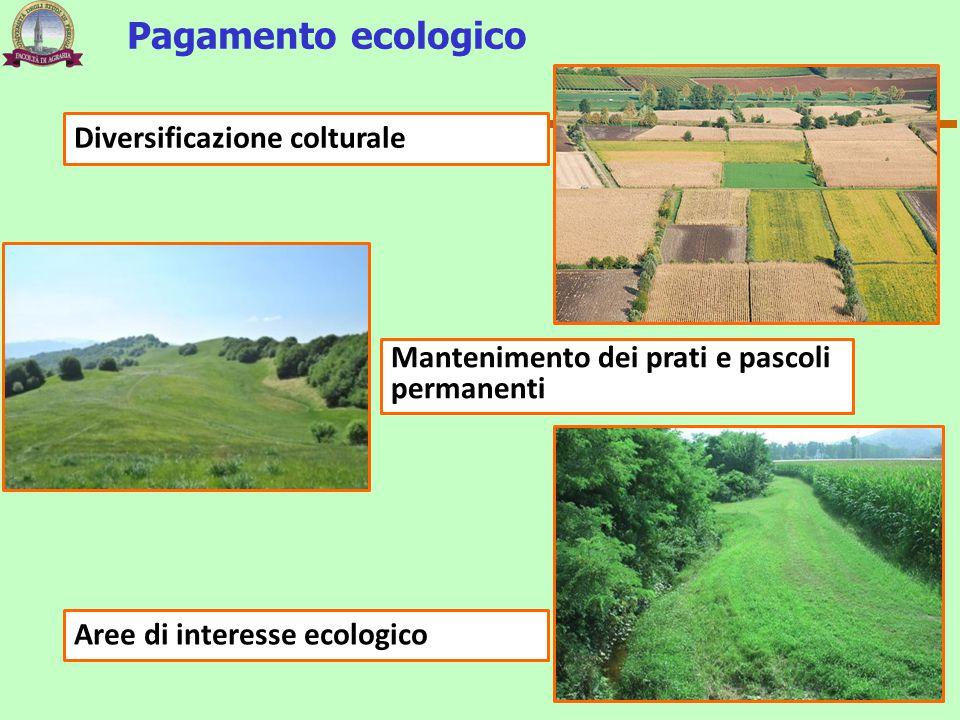Pagamento ecologico Diversificazione colturale