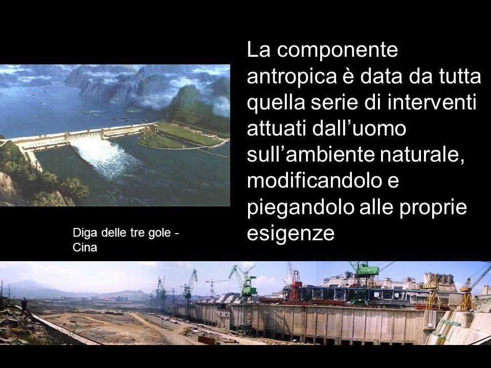 La componente antropica è data da tutta quella serie di interventi attuati dall'uomo sull'ambiente naturale, modificandolo e piegandolo alle proprie esigenze