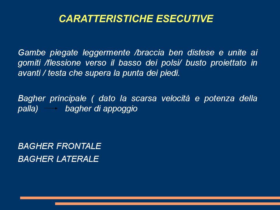 CARATTERISTICHE ESECUTIVE