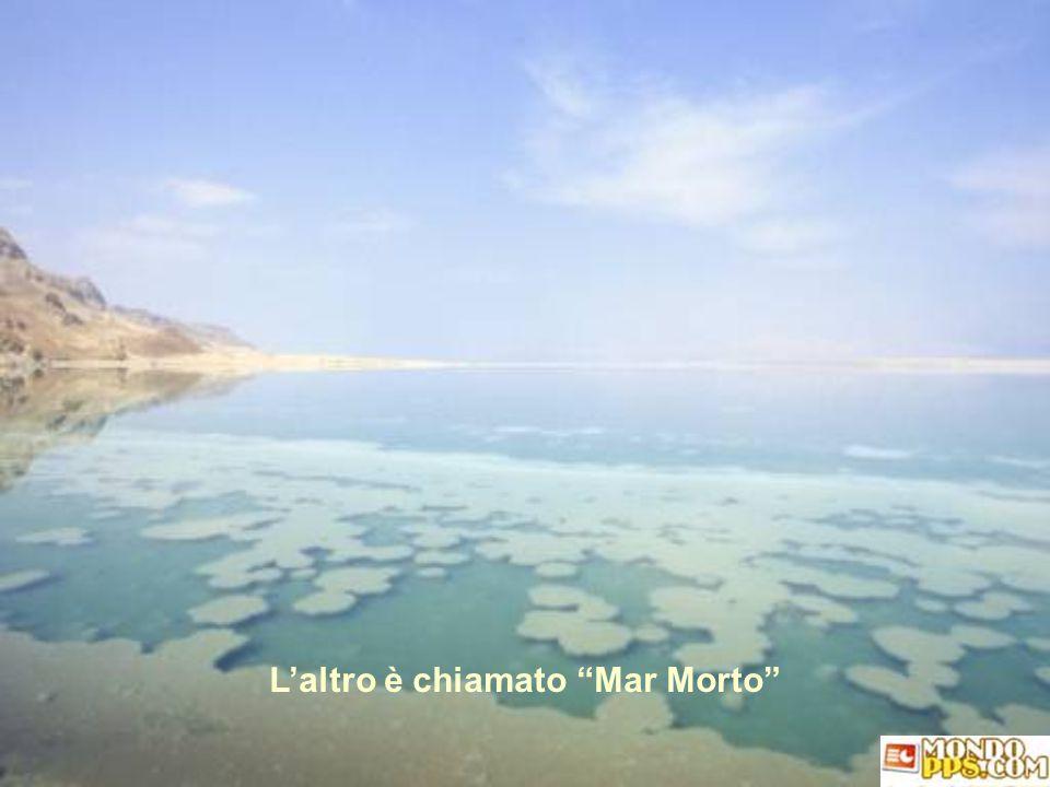 L'altro è chiamato Mar Morto