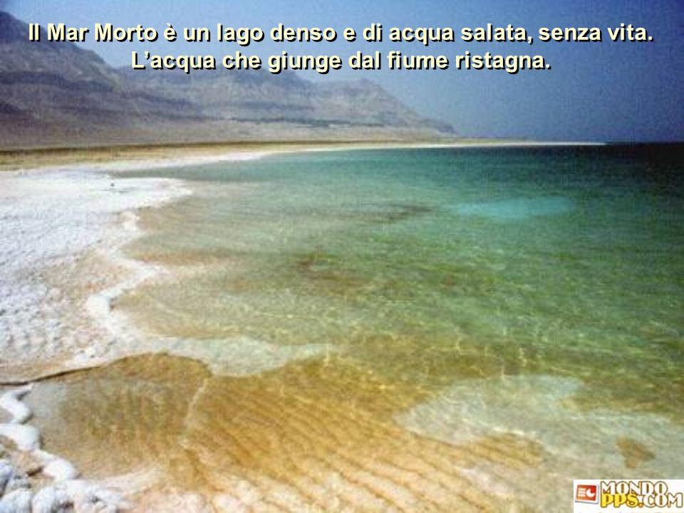 Il Mar Morto è un lago denso e di acqua salata, senza vita