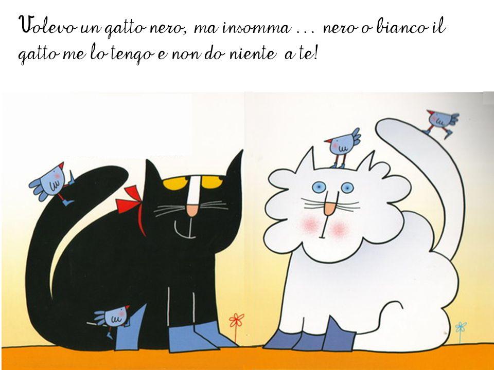 Volevo un gatto nero, ma insomma … nero o bianco il gatto me lo tengo e non do niente a te!