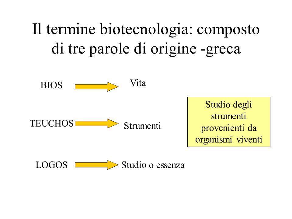 Il termine biotecnologia: composto di tre parole di origine -greca