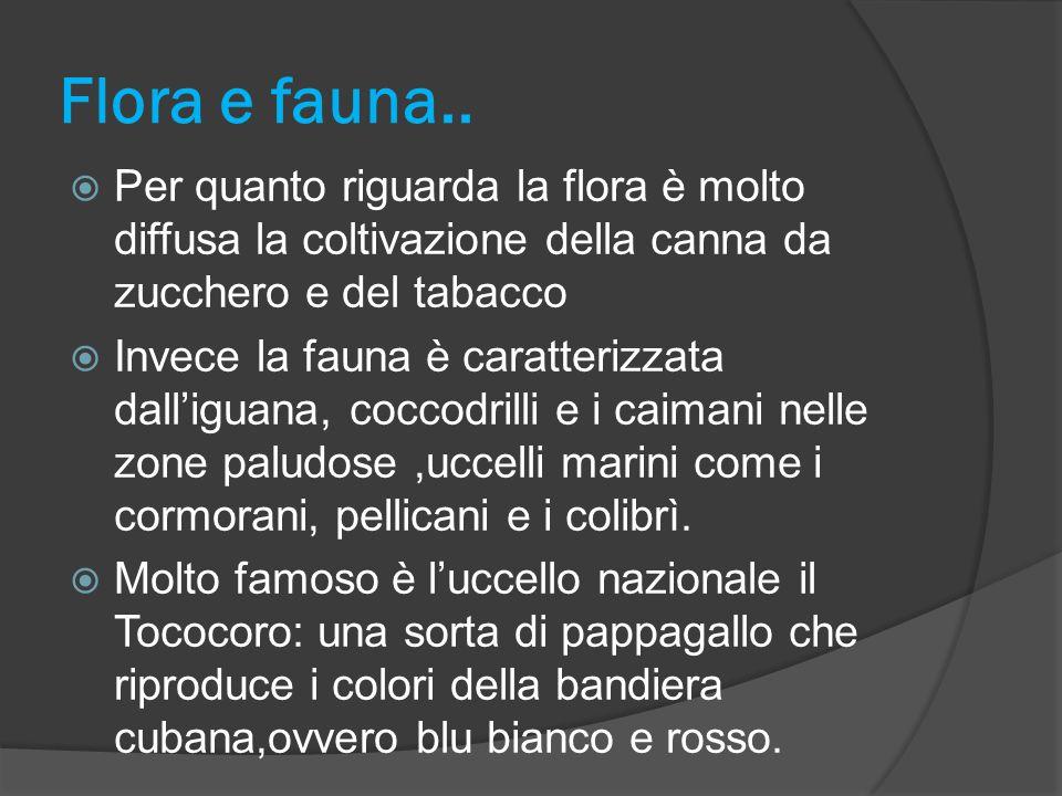 Flora e fauna.. Per quanto riguarda la flora è molto diffusa la coltivazione della canna da zucchero e del tabacco.
