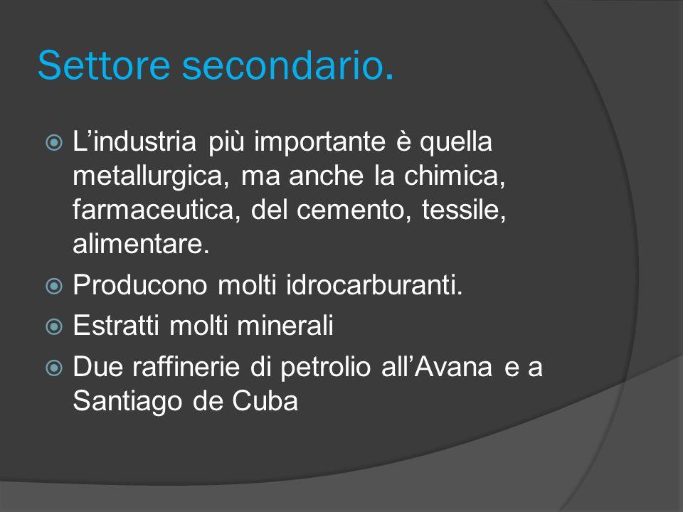 Settore secondario. L'industria più importante è quella metallurgica, ma anche la chimica, farmaceutica, del cemento, tessile, alimentare.
