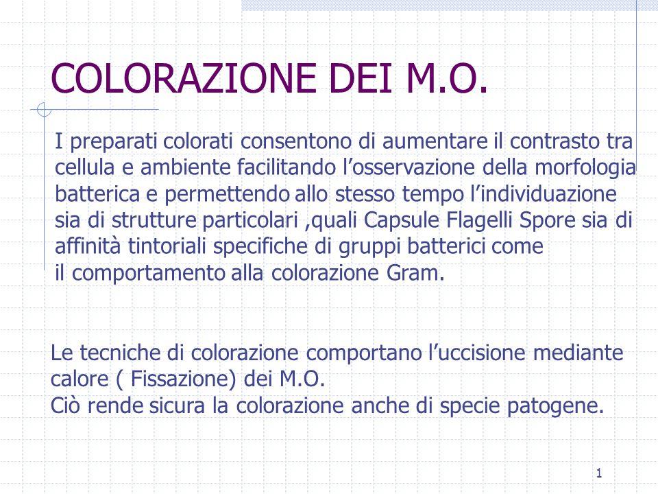 COLORAZIONE DEI M.O. I preparati colorati consentono di aumentare il contrasto tra. cellula e ambiente facilitando l'osservazione della morfologia.