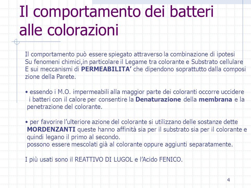 Il comportamento dei batteri alle colorazioni