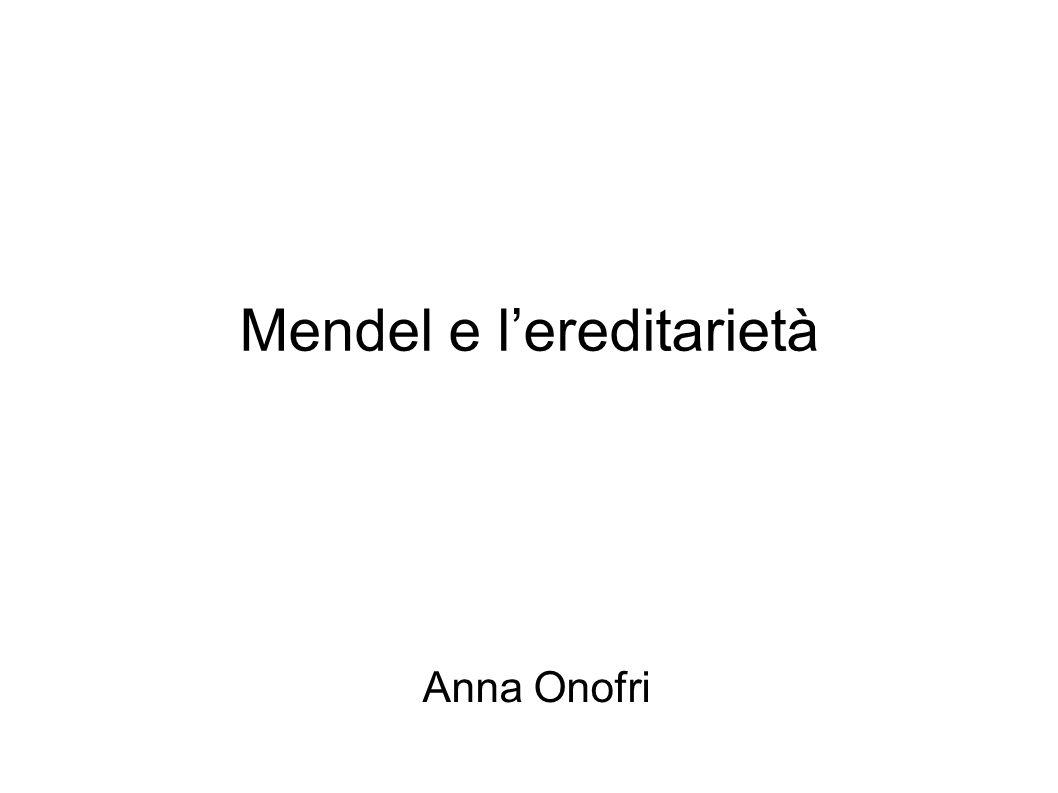 Mendel e l'ereditarietà