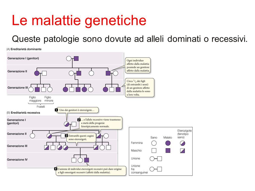 Le malattie genetiche Queste patologie sono dovute ad alleli dominati o recessivi. 14