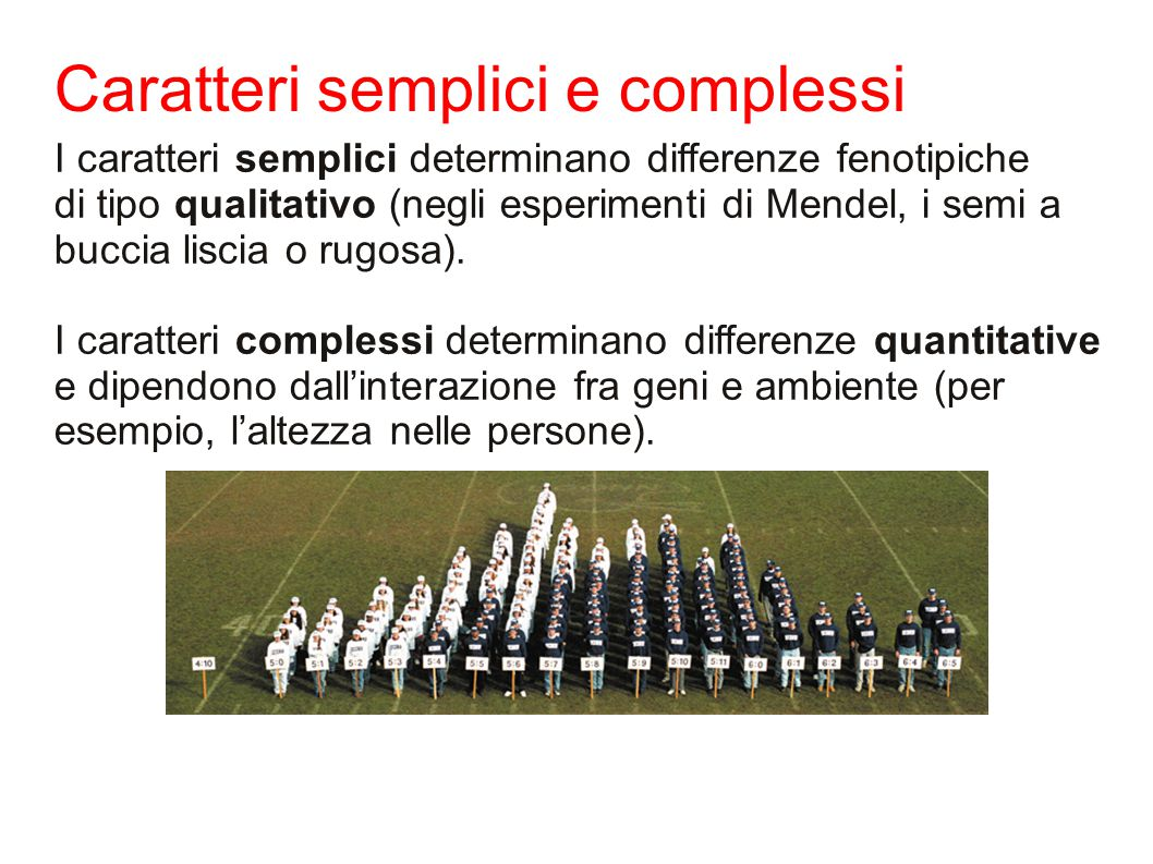 Caratteri semplici e complessi